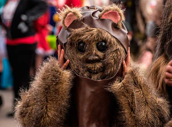 Conoce a Ewok de Star Wars - Plaza Norte