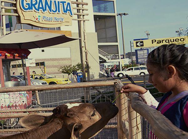 La Granjita - Plaza Norte