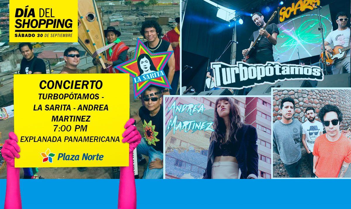 Concierto de Rock - Día del Shopping  - Plaza Norte