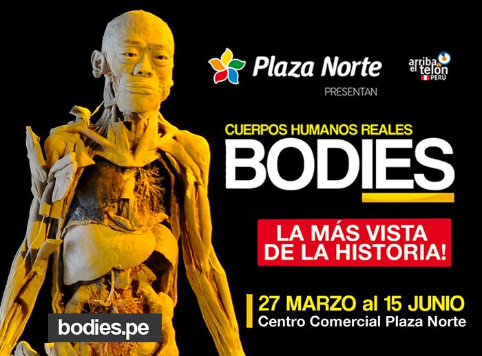 BODIES - CUERPOS HUMANOS REALES - Plaza Norte