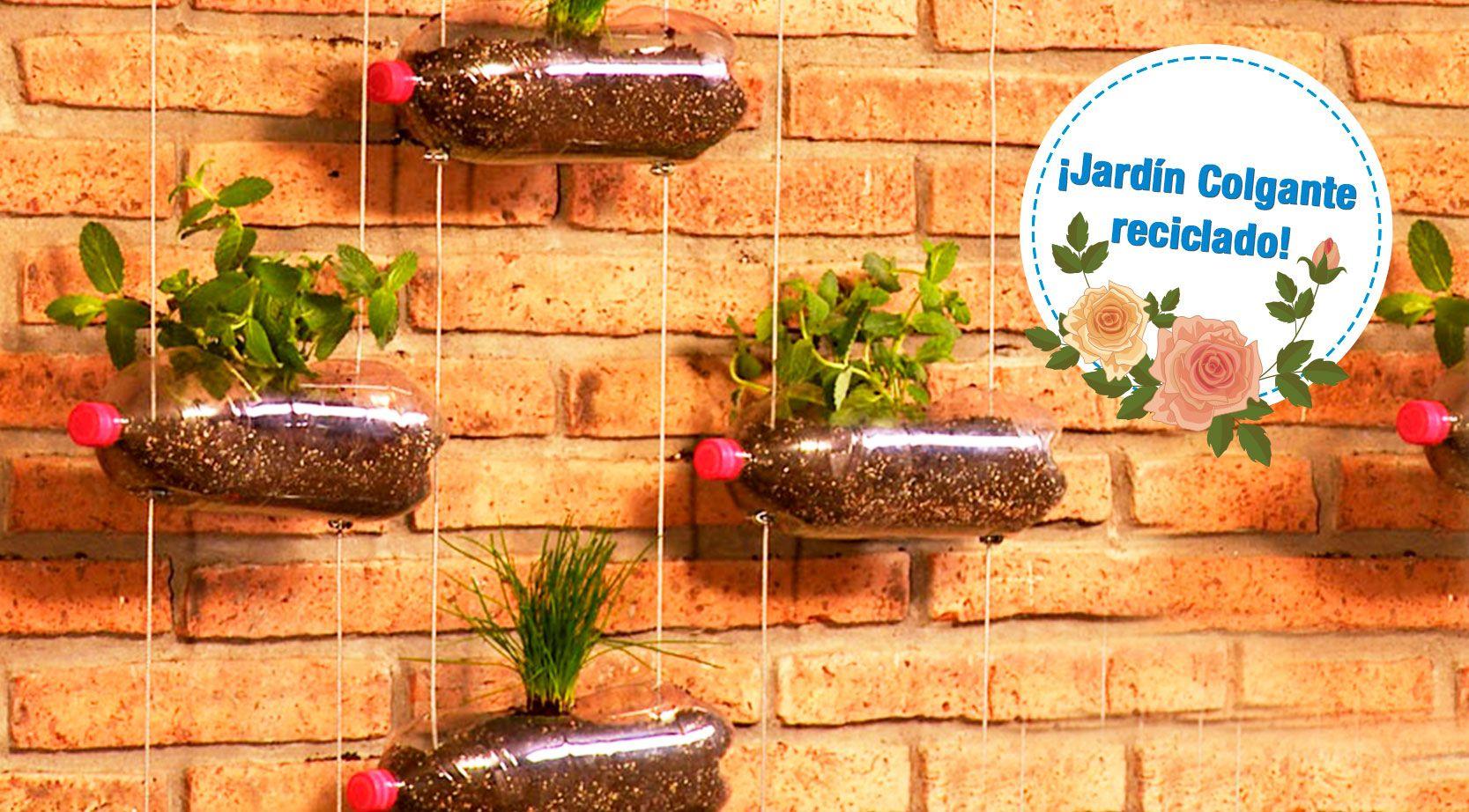 ¿Cómo hacer un jardín colgante reciclando botellas? - Plaza Norte