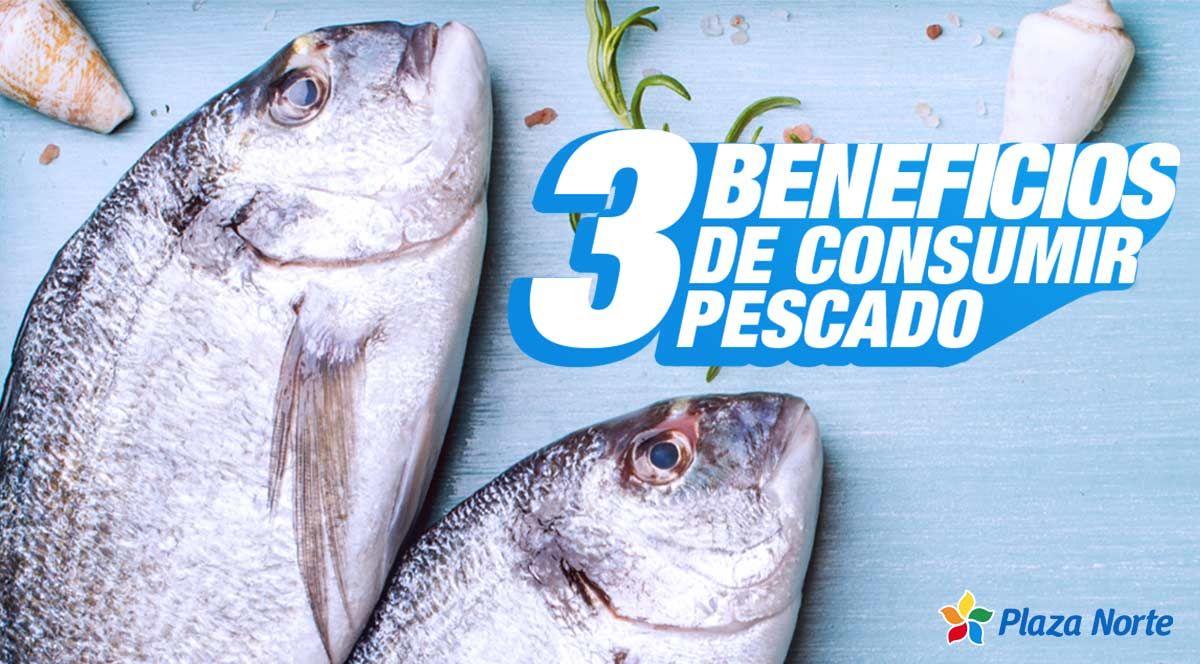 3 beneficios de consumir pescado que potencian la salud - Plaza Norte